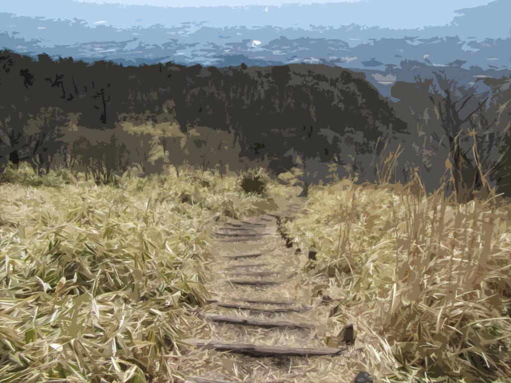 フリー素材背景【登山道の階段(下り)】